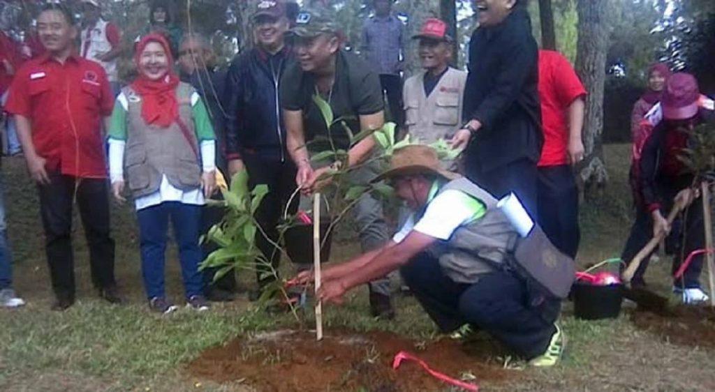 1327181-Tanam-Seribu-Pohon-di-KBU